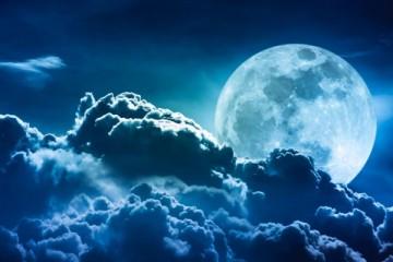 Saznanja - Mesečeva dijeta