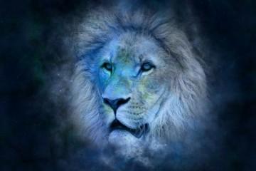 Horoskop: LAV -- karakteristike