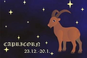 Erotski horoskop - Karakteristike Jarca u horoskopu