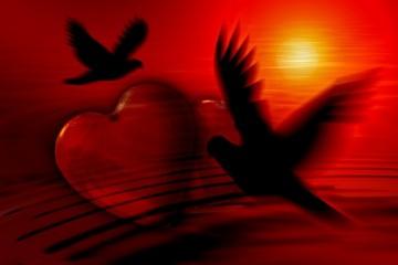Stepenice ka ljubavi - Srećan je onaj koji ume da voli